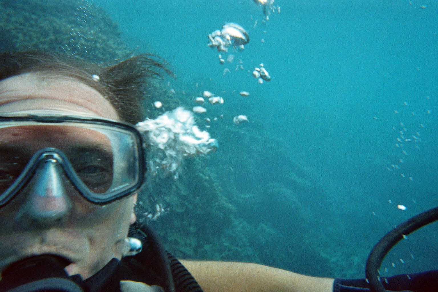 Plongée dans le lagon de tahaa